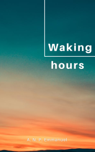 Waking hours A N P Emmanuel book cover